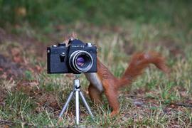 MiniFotograf